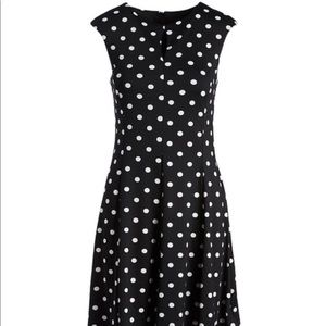 XL Shelby & Palmer Polka Dot Dress NWT